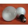 68395A: Incandescent Flood Lamp